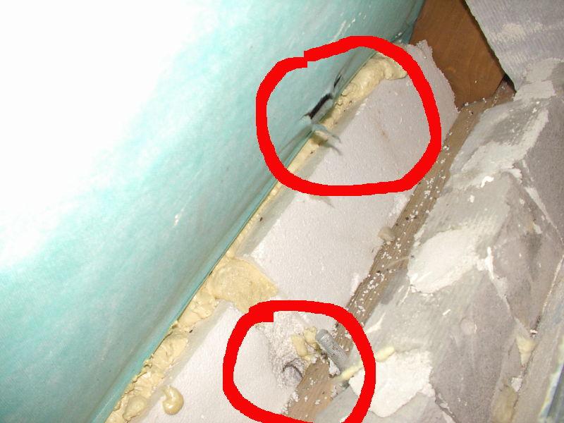 wełna czy pianka pur - szkodniki w izolacji